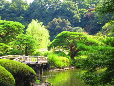 Shinjuku Gyoen National Garden 免版税图像
