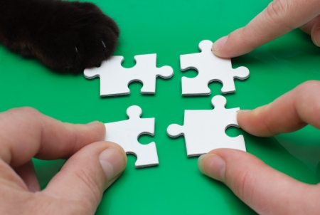 Close up of three people hands and cat feet with puzzle photo