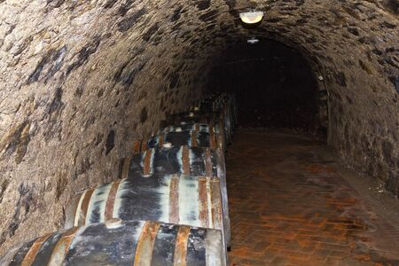 matures: Long series of wooden barrels in which the wine matures