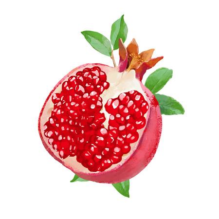 smakelijke aquarel granaatappel vector illustratie met bladeren