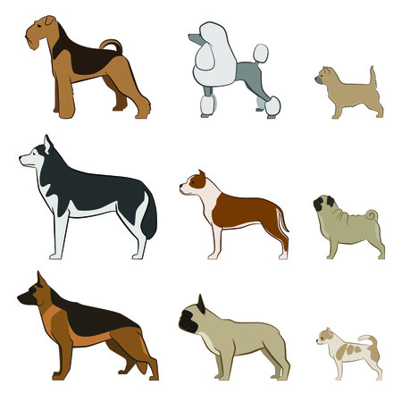 manner: Set dogs painted in profile, animated manner. On a white background. Illustration