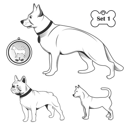 jack russel: Set of dogs. Contour on a white background. Drawn in cartoon style.