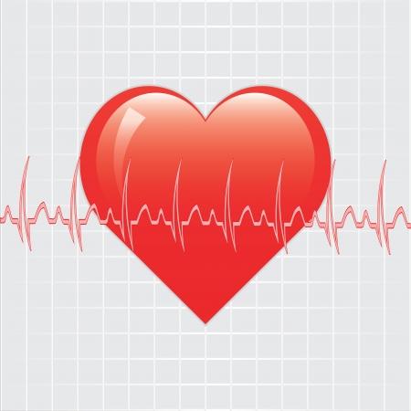 pulsating: Heart with ekg  Illustration