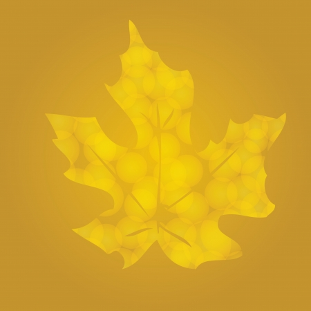 Yellow autumn leaf sycamore with lots of veins on a white background Stock Vector - 15381980