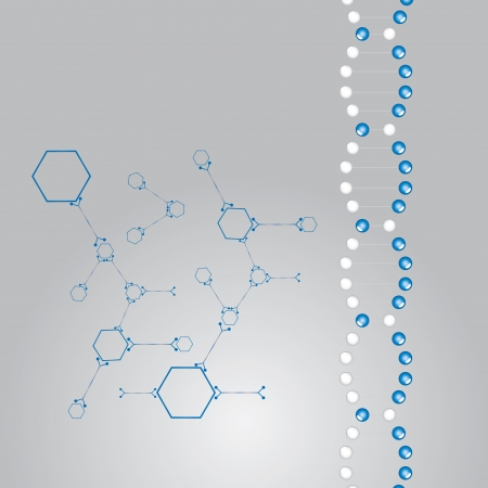 DNA strand illustration  whit atoms vector Stock Vector - 17855367