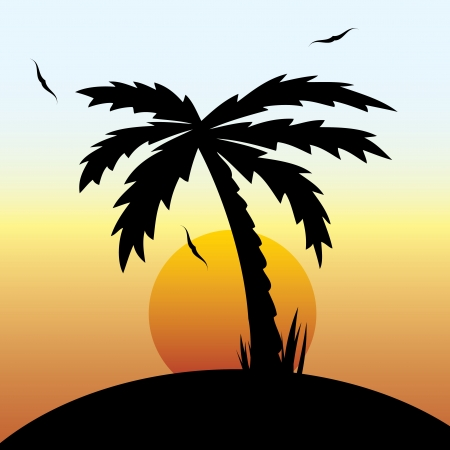 Vector illustration of a tropical sunset and palm tree vector