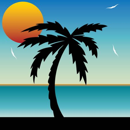 caribbean beach: Vector illustration of a tropical sunset and palm tree vector