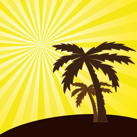 Vector illustration of a tropical sunset and palm trees vector Illustration