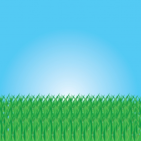 Illustration Of Summer Grass, Vector Illustration Stock Vector - 18577490
