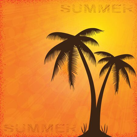 Summer background whit palm trees