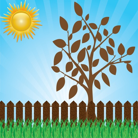 A green lawn with shrubs and trees and fence .vector Stock Vector - 19859240