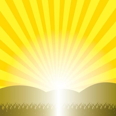 Orange sunburst summer Stock Vector - 20458768