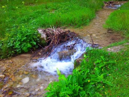 Cascade falls over mossy rocks. photo