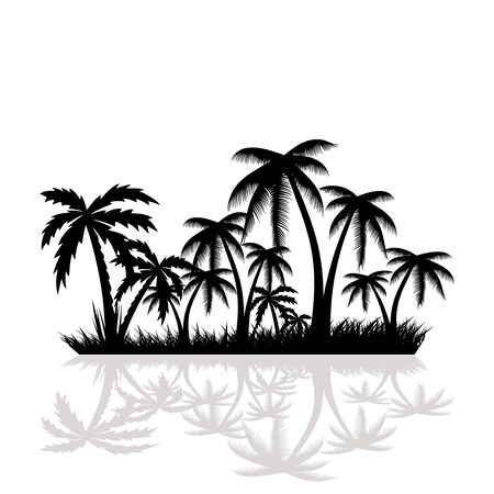 fronds: Palm trees.vector