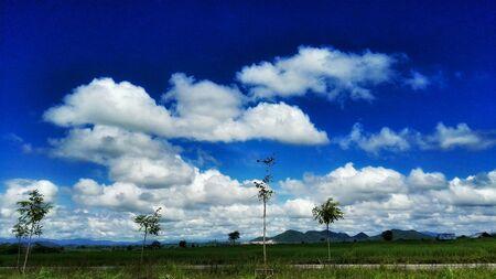 bright: The bright sky