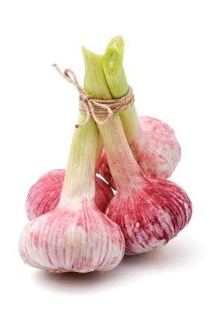 bulbet: Fresh garlic in a bundle, isolated, white background Stock Photo