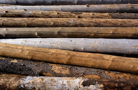 lumbering: Backgrounds and textures: stack of wood, timber industry or nature abstract background Stock Photo