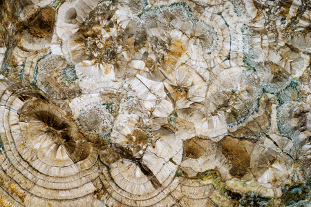 twirls: Backgrounds and textures: surface of beautiful brown-white decorative stone, abstract pattern of swirls, twirls, lines, cracks, spots and stains, natural background