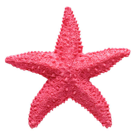 Red starfish souvenir, handmade decoration, isolated on white background