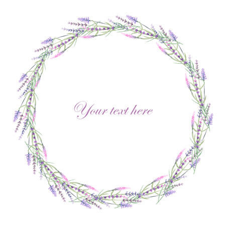 purple wreath: Wreath of lavender painted with watercolors on a white background, decoration postcard or invitation