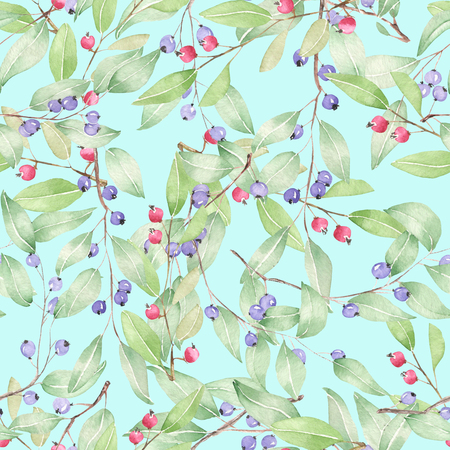viburnum: Seamless pattern of blueberries painted in watercolor on a mint background Stock Photo