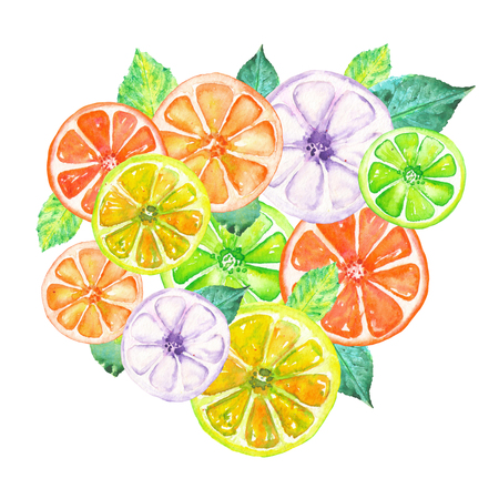 candied fruits: Illustration with colored candied fruits painted in watercolor on a white background