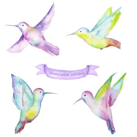 ease: Set with a samples of colibri painted in watercolor on a white background