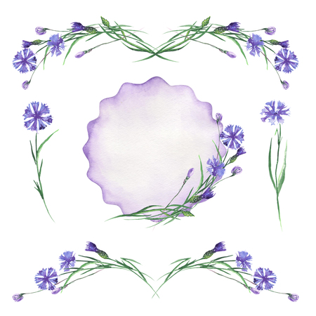 buttercup  decorative: Set, collection of floral cornflowers decor elements, frame border, floral decorative ornament painted in watercolor on a white background