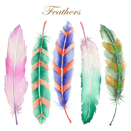 Set of colored feathers painted in watercolor on a white background