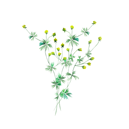 light painting: Isolated bouquet of yellow wildflowers painted in watercolor on a white background, decoration postcard, greeting card or invitation Stock Photo