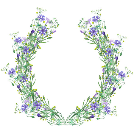 cornflowers: Wreath frame of wildflowers and cornflowers painted in watercolor on a white background, decoration postcard, greeting card or invitation Stock Photo