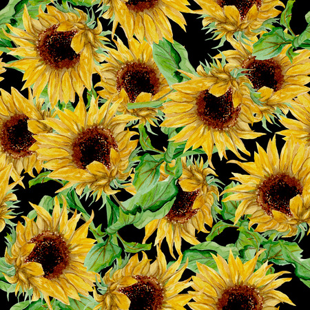 Seamless pattern with yellow sunflowers painted in watercolor on a black background Imagens