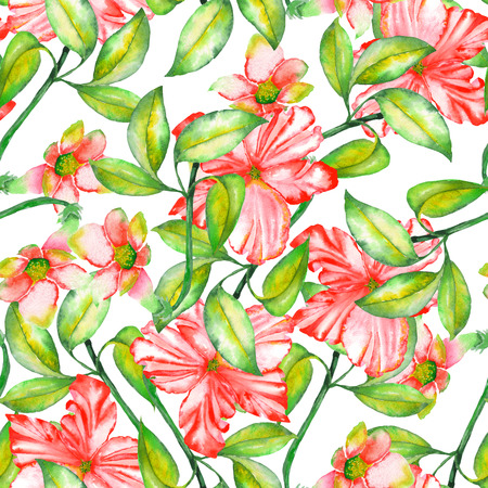incarnadine: A seamless pattern with the watercolor red exotic flowers, hibiscus on a white background