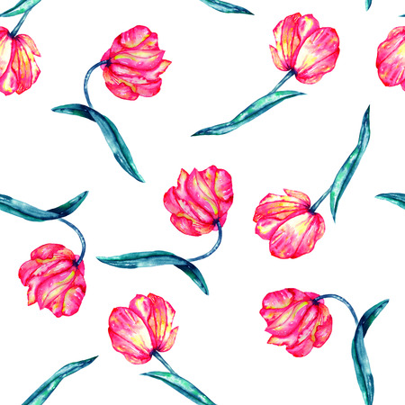 incarnadine: A seamless pattern with the watercolor crimson and scarlet tulips painted on a white background Stock Photo