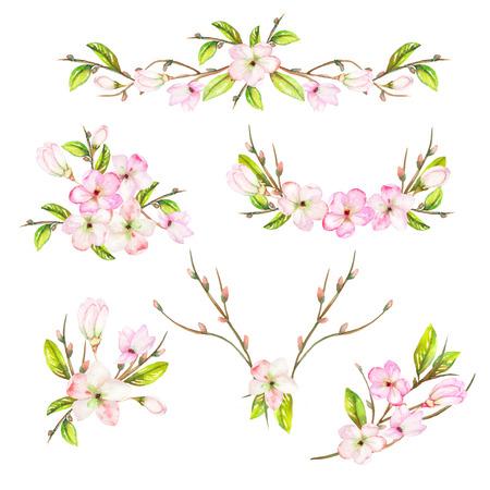 Een set met een geïsoleerde frameranden, bloemen decoratieve versieringen met de aquarel bloeiende bloemen, bladeren en takken met de knoppen, geschilderd op een witte achtergrond voor een bruiloft of andere decoratie