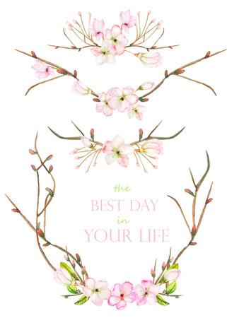 branches with leaves: A set with the isolated frame borders, floral decorative ornaments with the watercolor blooming flowers, leaves and branches with the buds, painted on a white background for a wedding or other decoration