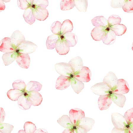 tender: A seamless floral pattern with the tender pink apple tree blooming flowers, painted in a watercolor on a white background