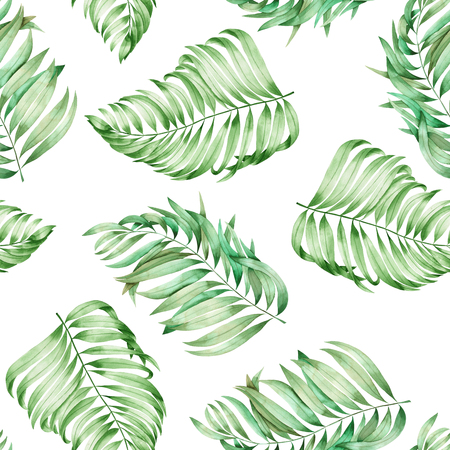 A seamless pattern with the branches of the leaves of a palm painted in watercolor on a white background Stock Photo