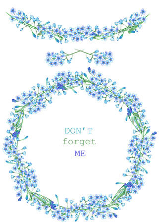 florescence: Frame border, garland and wreath of the blue forget-me-not flowers Myosotis, painted in a watercolor on a white background, greeting card, decoration postcard or invitation Stock Photo
