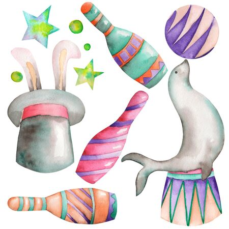 fur seal: A watercolor circus set with the isolated hand drawn elements: a fur seal with a ball, a hat with a rabbit and circus bowls. Painted on a white background.