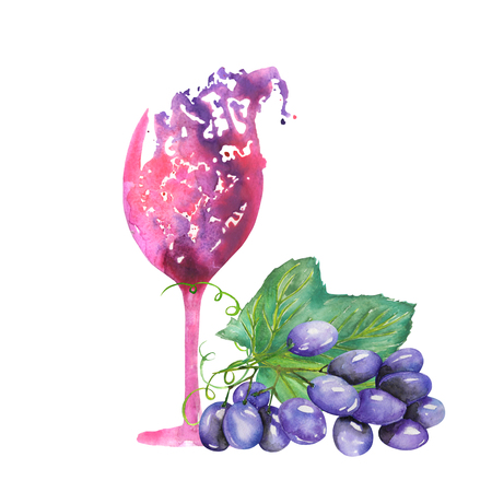 red grape: Image of the isolated watercolor abstract glass of red wine and bunch of blue grapes. Painted hand-drawn in a watercolor on a white background.