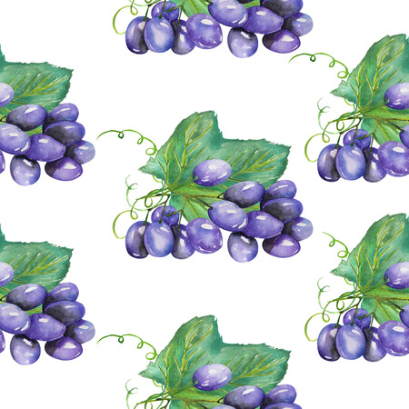 red grape: A seamless pattern with the hand-drawn bunches of violet grapes. Painted in a watercolor on a white background.