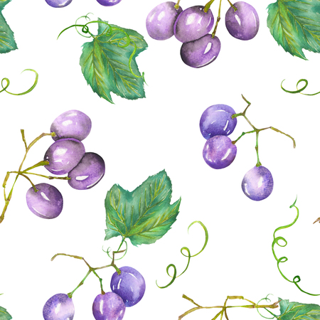 red grape: A seamless pattern with the hand-drawn violet grapes. Painted in a watercolor on a white background.