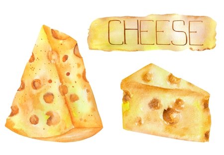 brie: Image of the isolated watercolor Dutch cheeses. Painted hand-drawn in a watercolor on a white background.