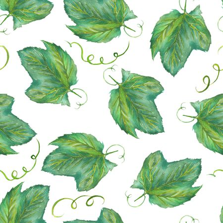 red grape: A seamless pattern with the hand-drawn grape leaves. Painted in a watercolor on a white background.