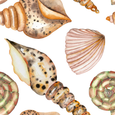 cochlea: A seamless pattern with the isolated shells, painted in a watercolor on a white background