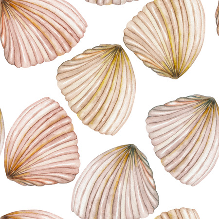 nettle: A seamless pattern with the isolated shells, painted in a watercolor on a white background