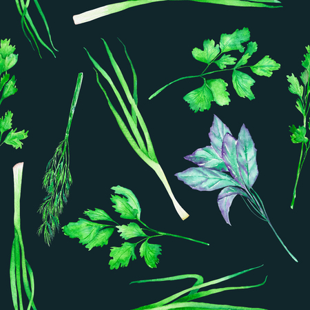 garden stuff: A seamless pattern with the isolated watercolor spices (spicy herbs): onion green, dill, parsley, cilantro and basil, painted on a dark background