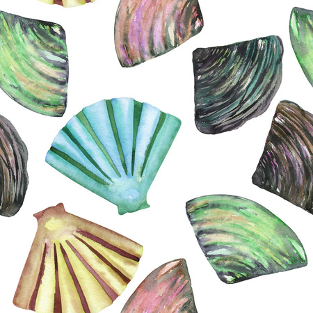 nacre: A seamless pattern with the isolated shells and mussels, painted in a watercolor on a white background