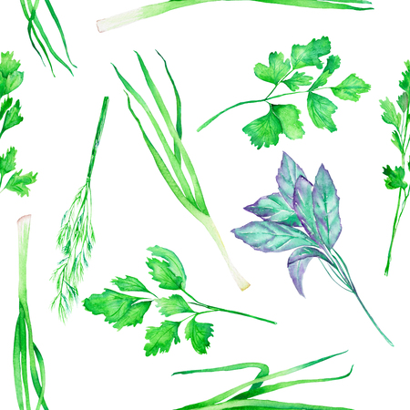 dill and parsley: A seamless pattern with the isolated watercolor spices (spicy herbs): onion green, dill, parsley, cilantro and basil, painted on a white background